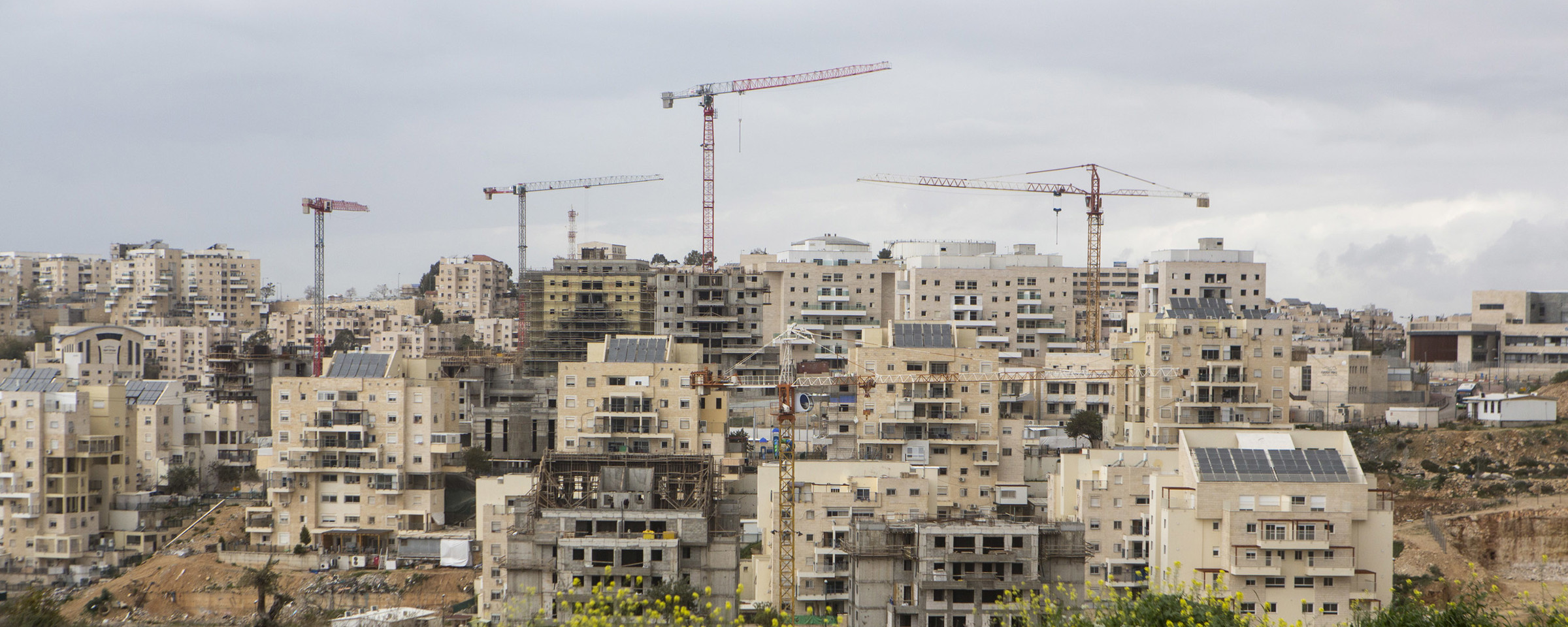 Photo shows construction cranes towering over multi-story buildings in an Israeli settlement
