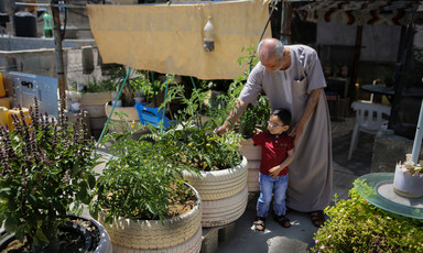 Photo shows man standing above small boy as they inspect a plant in a container made from recycled tires amid rooftop garden