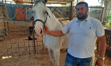 A man holds a white horse by its rein