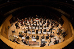 Aerial view of the Palestine Youth Orchestra on stage