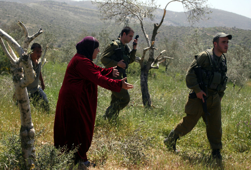 Woman pleads to Israeli soldiers in destroyed olive grove