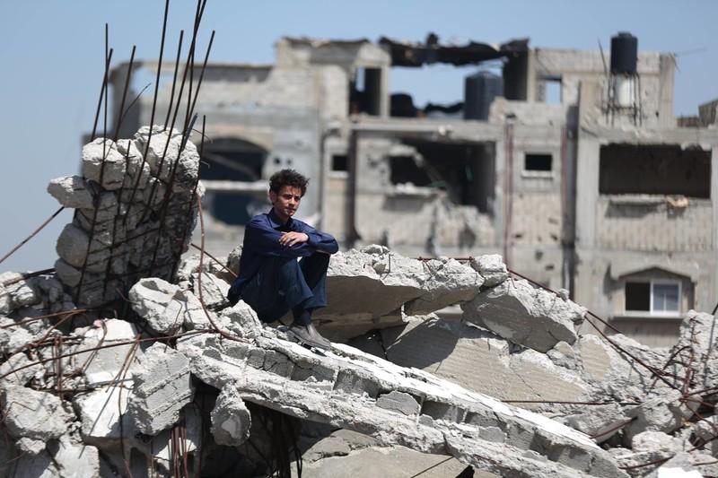 the triumph of an arab idol the electronic intifada