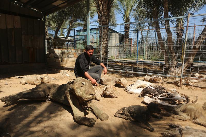 Man sits among variety of stuffed animals