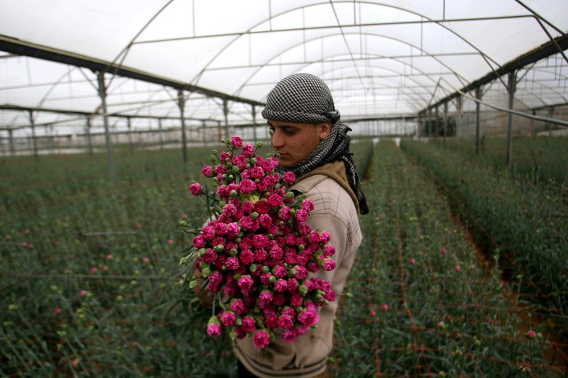 Young man holds armful of flowers in a greenhouse