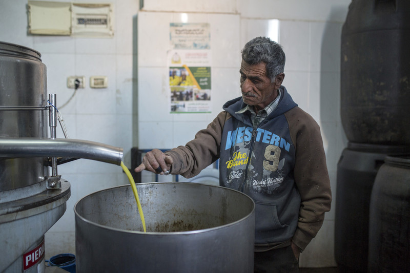 A man checks the juice of olives as they are being pressed.