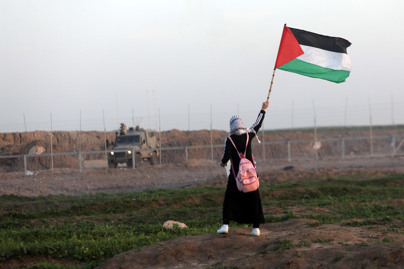 A young Palestinian waves a Palestinian flag