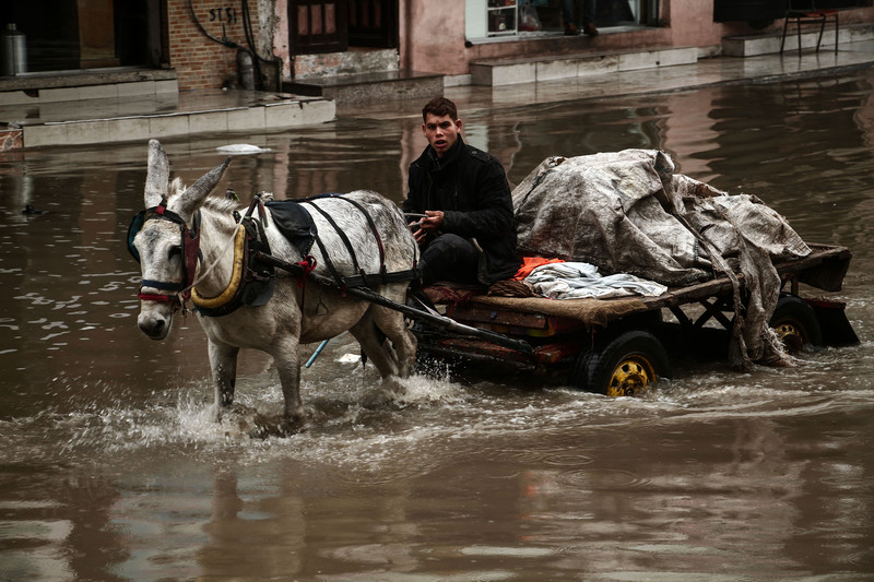 A young man drives a mule driven cart through a flooded street