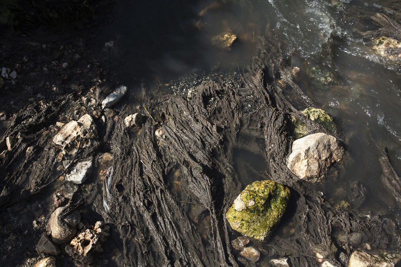 Rocks stick out of dirty water