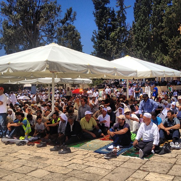 Thousands upon thousands at #aqsa today - some in shade others in sun #ramadan #jerusalem #palestine on Instagram