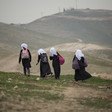 Four students walking on a hill with their backpacks.
