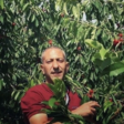 Man stands in front of bushes