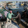 Two men carry crate of small fish at a harbor