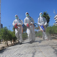 Three men in hazmat suits carrying spraying equipment