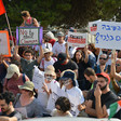 A crowd of protestors hold up the Palestinian flag and signs in Hebrew and English