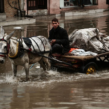 A young man drives a cart pulled by a mule through a flooded street