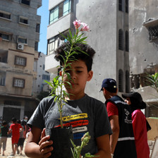 Boy holds a plant