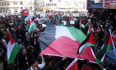 Fadi Quran   The Electronic Intifada