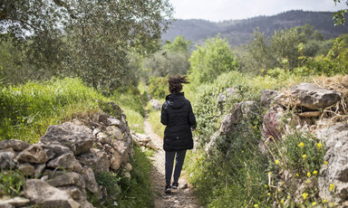 Girl seen from behind walking on path