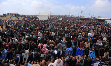 Huge crowd of worshippers performs prayers in Gaza.