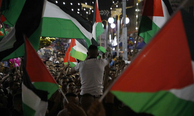 Crowd waves Palestinian flags in town square