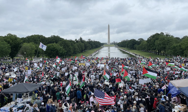Large crowd with flags near reflecting pool and grass
